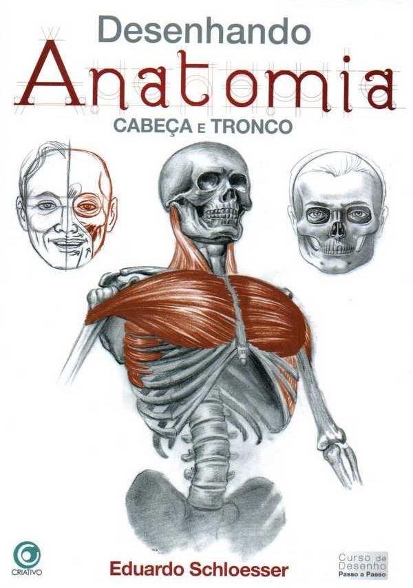 desenhando_anatomia_cabeca_tronco